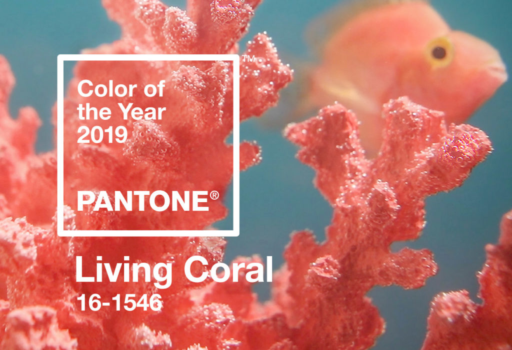 pantone color of the year 2019 living coral kehoe kustom orange county
