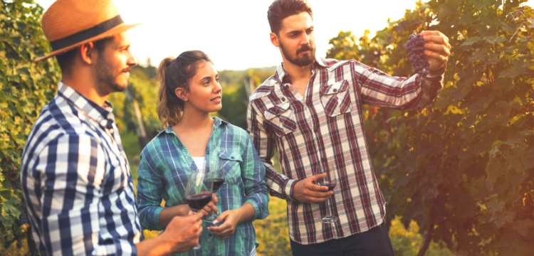 Wineries in the Hudson Valley NY area